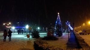 prima_ninsoare